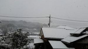 大雪((+_+))ここ神奈川ですよね?|LUTIE(ルティエ)本厚木 美容室 美容院